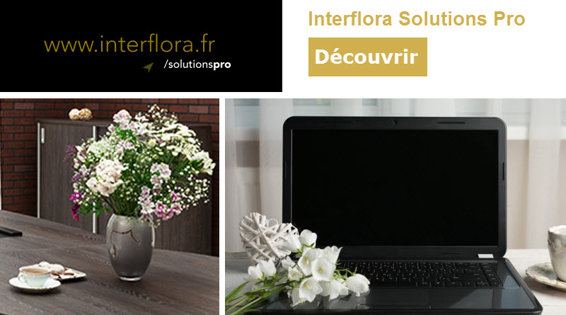Interflora Solutions Pro - Activ Assistante_