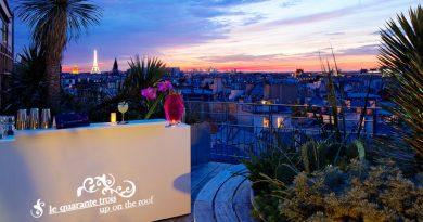 Holiday Inn Paris Notre-Dame- Rooftop éco-hôtel chic