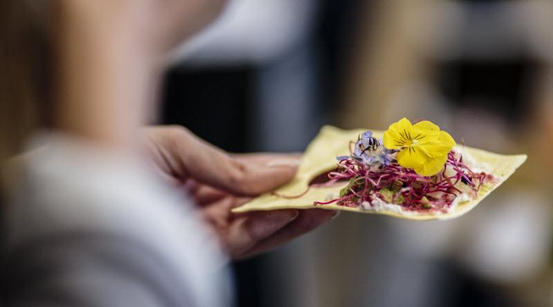 Design culinaire Miitonner - Miit Studio